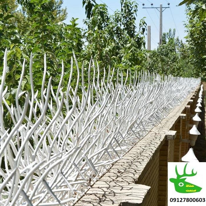 حفاظ شاخ گوزن