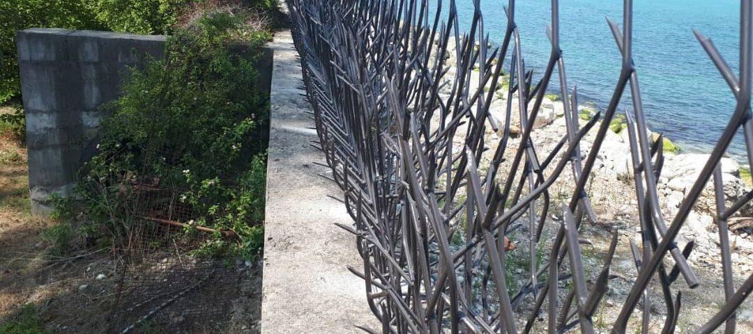 حفاظ شاخ گوزنی در گلستان
