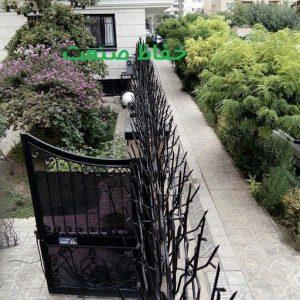 حفاظ شاخ گوزنی در محوطه ساختمان